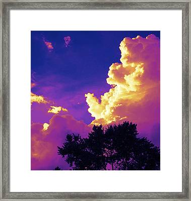Framed Print featuring the photograph Purple Thunder by Deborah Fay