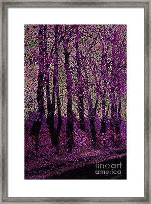 Purple Trees Framed Print by Carol Lynch