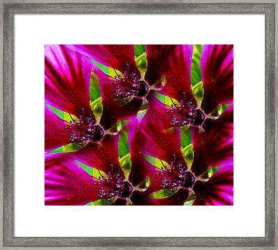Framed Print featuring the photograph Purple Trip by David Stine