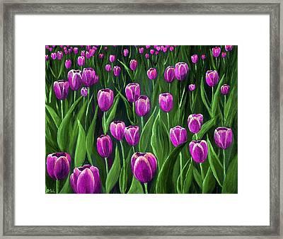 Purple Tulip Field Framed Print by Anastasiya Malakhova