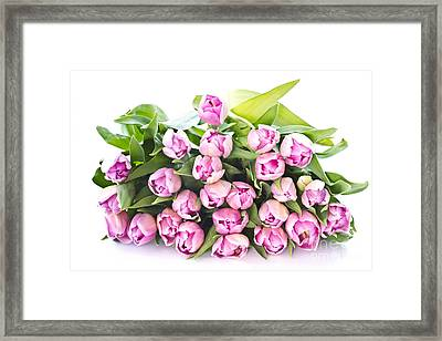 Purple Tulips Framed Print by Boon Mee