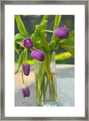 Framed Print featuring the photograph Purple Tulips by Kenny Francis