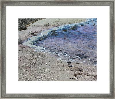 Purple Waters With Sand Framed Print