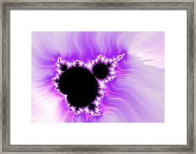 Purple White And Black Mandelbrot Set Digital Art Framed Print by Matthias Hauser