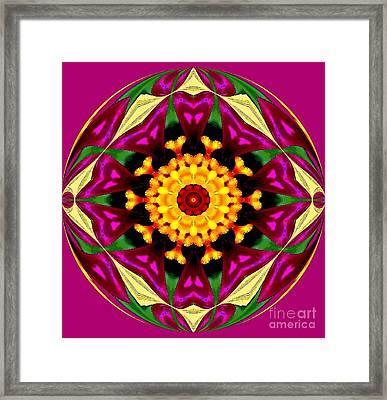 Purple Yellow Flower Orb Framed Print by Annette Allman