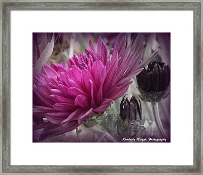 Purpose Framed Print