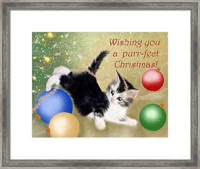Purr-fect Christmas Greetings  Framed Print