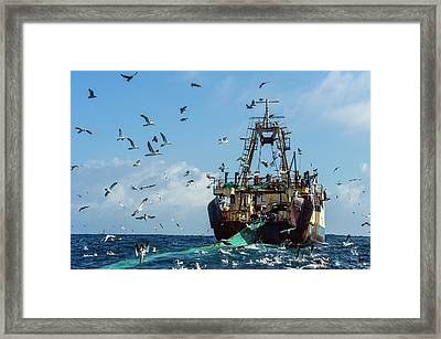 Purse-sein Trawler Pulling In Its Nets Framed Print