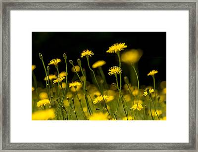 Push Ups Framed Print by Aaron Bedell