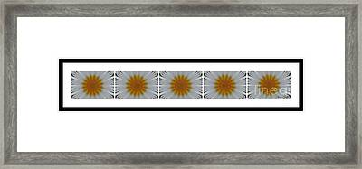 Pushing Up Daisies - Kaleidoscope - Pentaptych Framed Print by Barbara Griffin