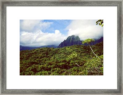 Puu Piei Trail Koolau Mountains Framed Print by Thomas R Fletcher