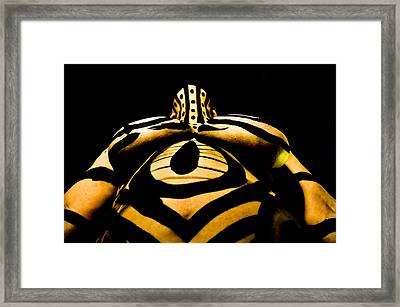 Pw Db22 Framed Print