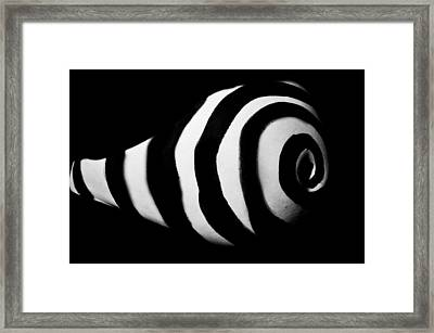 Framed Print featuring the photograph Pw Kh004 by Kristen R Kennedy