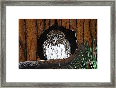 Framed Print featuring the painting Pygmy Owl by Jennifer Lake