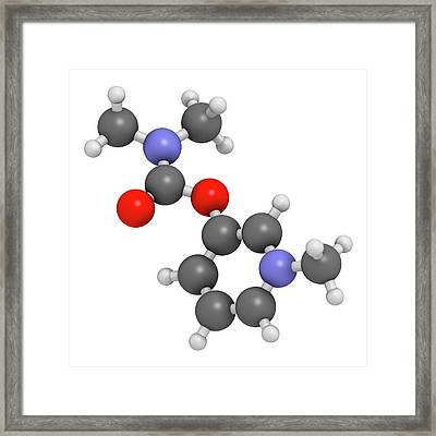 Pyridostigmine Cholinesterase Drug Framed Print by Molekuul