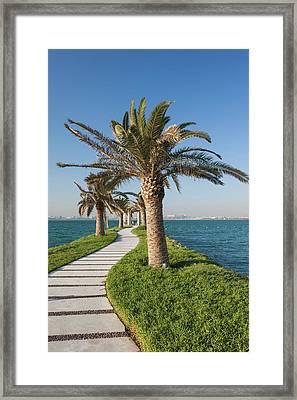 Qatar, Doha, West Bay Walkway With Palms Framed Print