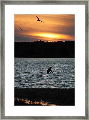 Quahogging Framed Print