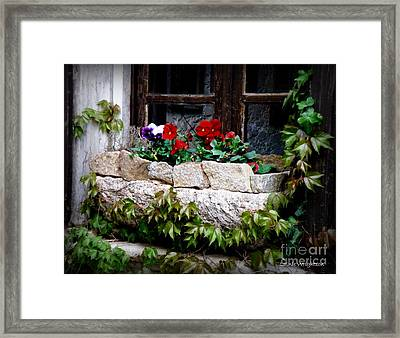 Quaint Stone Planter Framed Print by Lainie Wrightson
