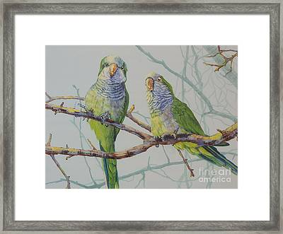 Quaker Chat Framed Print