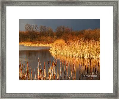 Quakertown Marsh Before Spring Storm Framed Print