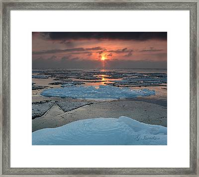 Quality Time Framed Print by Gregory Israelson