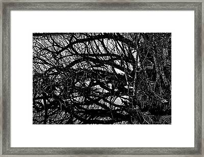 Framed Print featuring the digital art Quantum Entanglement 1 by Chriss Pagani
