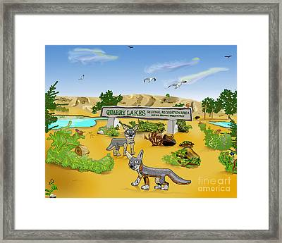 Quarry Lakes And Gray Foxes Framed Print