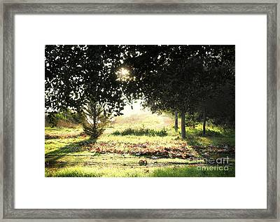 Framed Print featuring the photograph Quarry Lakes Sunrise by Ellen Cotton