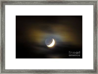 Quarter Moon Framed Print by Judy Wolinsky
