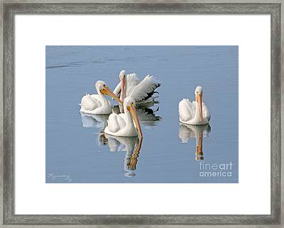 Quartet's Reflections Framed Print