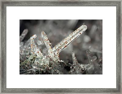 Quartz Needle Crystals Framed Print by Dr Juerg Alean
