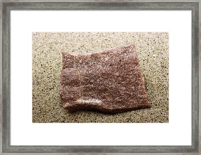 Quartzite, A Metamorphic Rock Framed Print