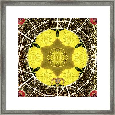Queen Bee-nectar Of Life Framed Print