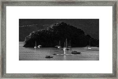 Queen Charlotte Sound Framed Print by Nigel Forster