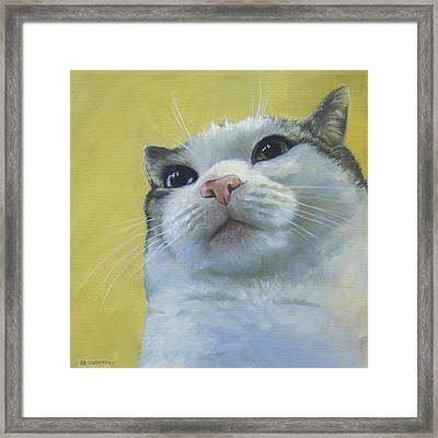 Queen Maizy Framed Print