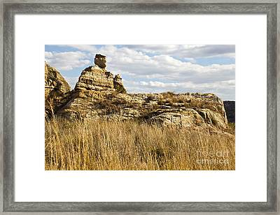 Queen Of Isalo  Madagascar Framed Print