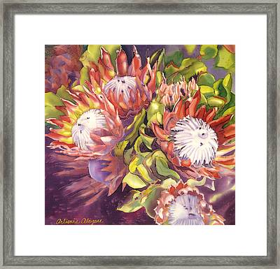 Queen Protea Framed Print