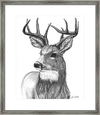Quick Steps In The Woods Framed Print
