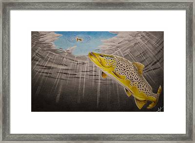 Quiet Anticipation Framed Print by Nick Laferriere