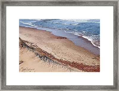 Quiet Beach Framed Print by Leona Arsenault