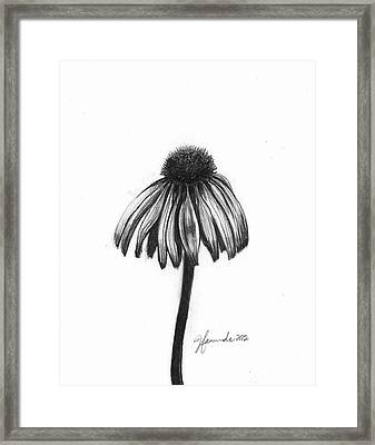 Quiet Comfort Framed Print