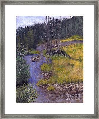 Quiet Creek Framed Print by Ginny Neece