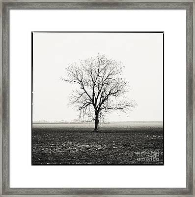 Quiet Desperation Framed Print by Scott Pellegrin