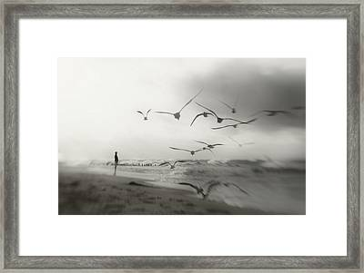 Quiet Dreams... Framed Print