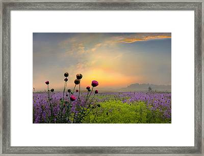 Quiet Evening Framed Print by Igor Zenin