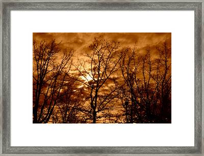Quiet Framed Print by Heather L Wright