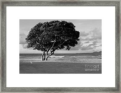 Quiet Kapaa Morning Framed Print