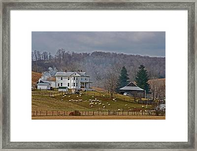 Quiet Living Framed Print