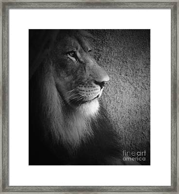 Quiet Majesty Framed Print