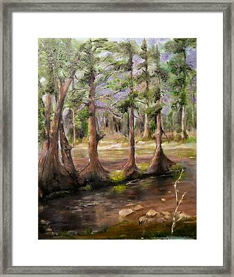 Quiet Moments Framed Print